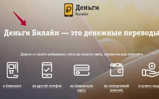 Как перевести деньги с Билайна на Билайн: подробная инструкция