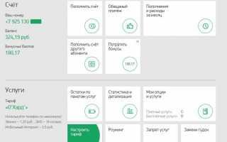 «Сервис-Гид» МегаФон — команды управления услугами