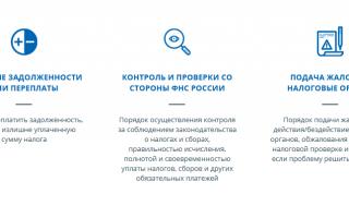 Как создать учетную запись ИП/юрлица напортале «Госуслуги»