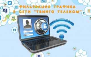 Твинго личный кабинет — информация для абонентов, дистанционные услуги