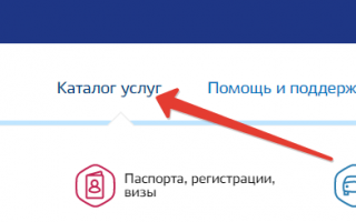 Пошаговая инструкция: регистрируем ООО через Госуслуги