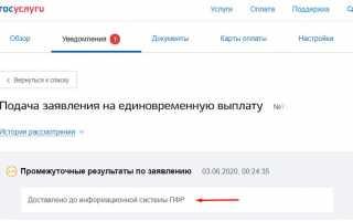 Как получить 10000 рублей (выплата) на ребенка от 3 до 16 лет через портал госуслуги и как подать заявление