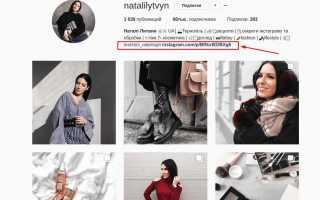 Бизнес в Instagram: как правильно создать профиль и качественный контент