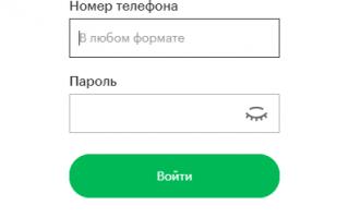 Личный кабинет Мегафон: вход без пароля – возможно ли это?