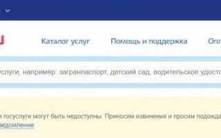 Что делать, если не работает онлайн-портал Госуслуги: причина ошибки, способы ее устранения
