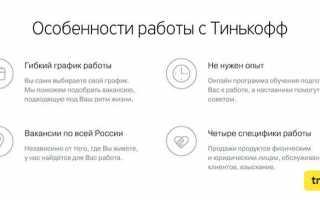 Работа на дому в банке Тинькофф — описание, личный кабинет, зарплаты и отзывы сотрудников