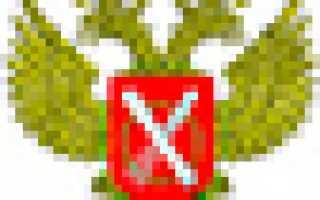 Выписка из ЕГРН онлайн — срочно и официально из Росреестра за 5 мин