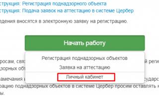«Цербер» Россельхознадзора: инструкция по работе с системой