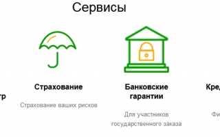 Вход в личный кабинет и регистрация на сайте ЭТП Сбербанк-АСТ: инструкция