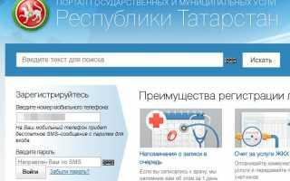 Госуслуги РТ — личный кабинет: вход на официальный сайт uslugi.tatarstan.ru, отзывы.