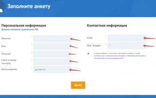 Личный кабинет Viva Деньги: вход, полная инструкция по работе с сервисом