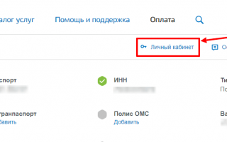 Личный кабинет Госуслуги Орёл – официальный сайт, вход, регистрация