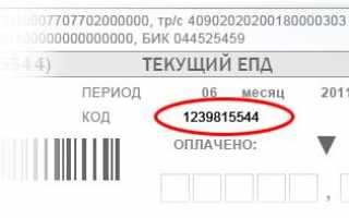 Личный кабинет Госуслуги РФ — вход по номеру телефона и СНИЛС