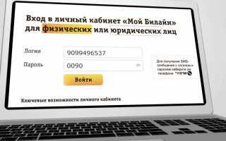 Заказать детализацию билайн на электронную почту. Личный кабинет Билайн – детализация звонков