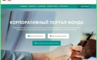 Новый портал ФСЗН, новая программа ДПУ, новые проблемы для пользователей