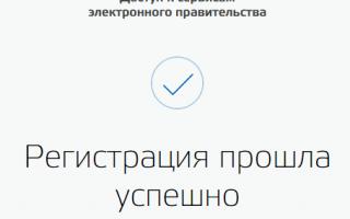 Как войти на сайт Госуслуги, если уже зарегистрирован?