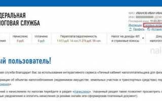 Как зарегистрироваться на nalog.ru — подробная инструкция