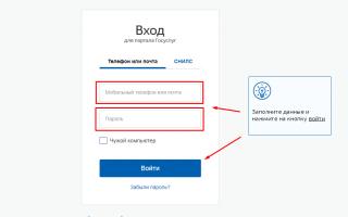 Личный кабинет Госуслуги Хабаровск – официальный сайт, вход, регистрация