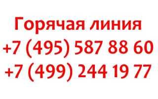 Горячая линия МИД РФ для граждан и туристов, как написать обращение?