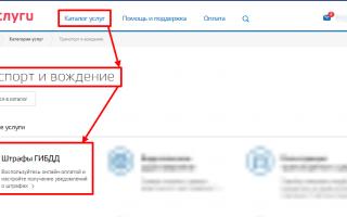 Проверка штрафов ГИБДД на портале Госуслуги: пошаговая инструкция