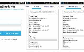 РИЦ Ульяновск личный кабинет — оплата услуг ЖКХ, действия по лицевому счету
