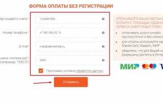 АО «Тываэнергосбыт» Кызыл — личный кабинет, показания счетчиков