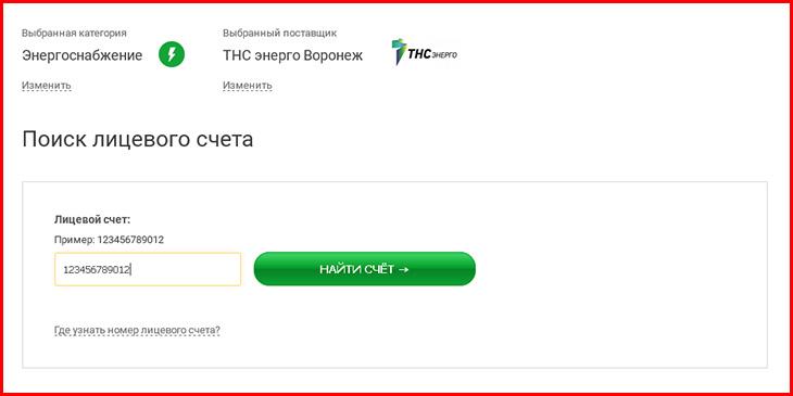 tns-energo-voronezh_2.jpg