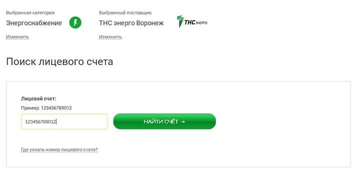 tns-energo-voronezh3.jpg