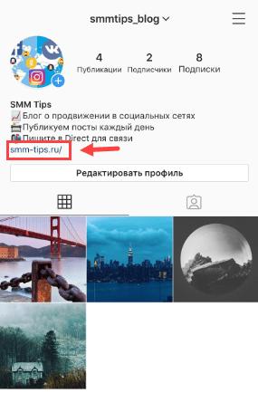 ssylka-v-shapke-profilya.png