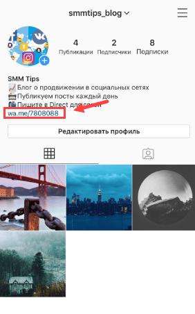 ssylka-na-vatsap-v-shapke-profilya.png