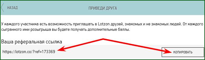 referalnaya-ssylka-na-lotzone.png