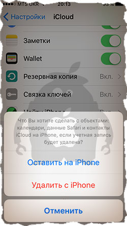 activate-appleid-on-iphone3.jpg