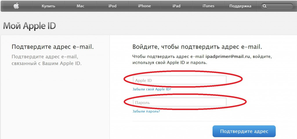 e-mail-podtverzhdenie_2-1024x480.jpg