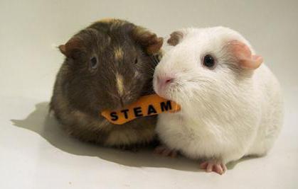 steam-semejnyj-dostup.jpg