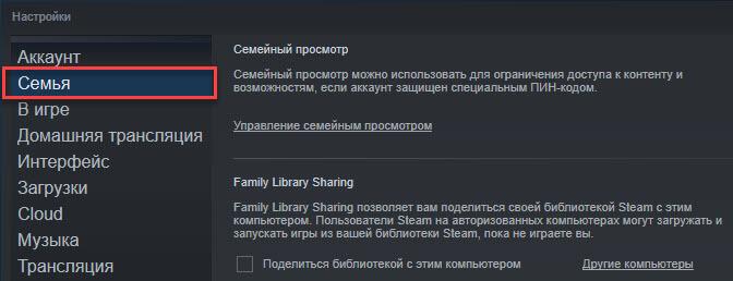 vkladka-semya-v-steam-1.jpg