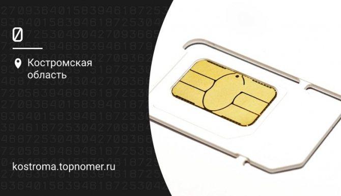 blog_kostroma_13_0-png-785x450_q85.jpg