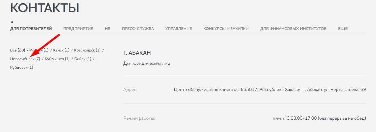 49_vyberite_novosibirsk.jpg