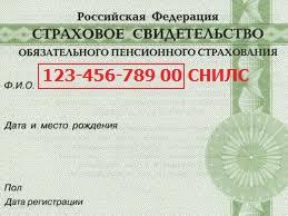 pp_image_75508_agpg5enwvtsnils-dlja-Gosuslugi.jpg