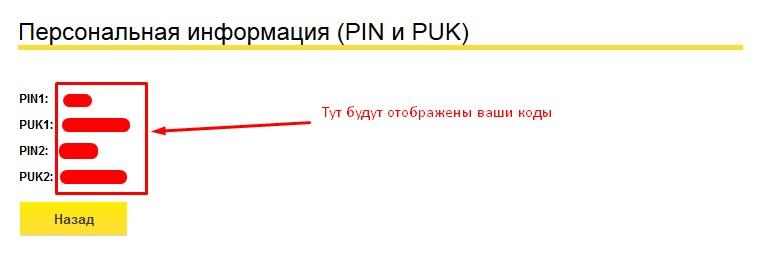 pin-i-puk-kody.jpg