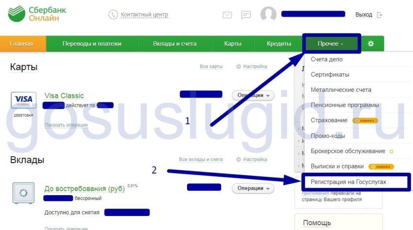 3.-Registratsiya-na-Gosuslugah-vo-vkladke-prochee.jpg