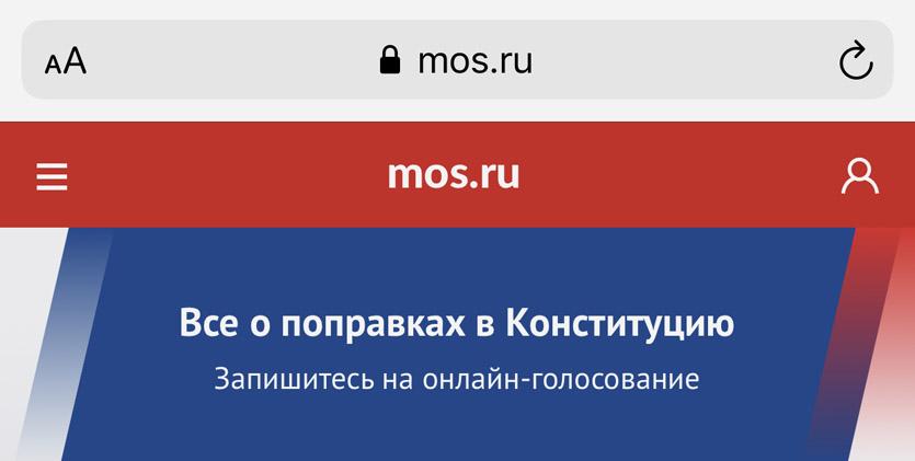 russia-constitution-poll-kak-golosovat-onlain-help-iphonesru-3.jpg