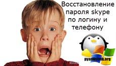 Vosstanovlenie-parolya-skype-po-loginu-i-telefonu.jpg