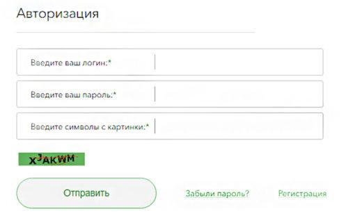 safmar-avtorizatsiya-500x311.jpg