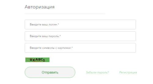 avtorizatsiya-safmar-500x276.jpg