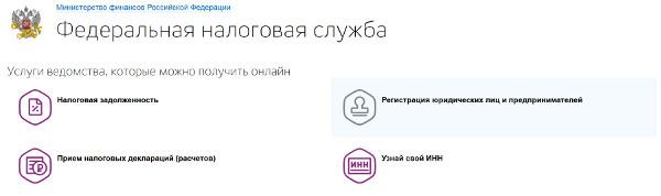 gosuslugi-uridicheskoe-lico-4.jpg