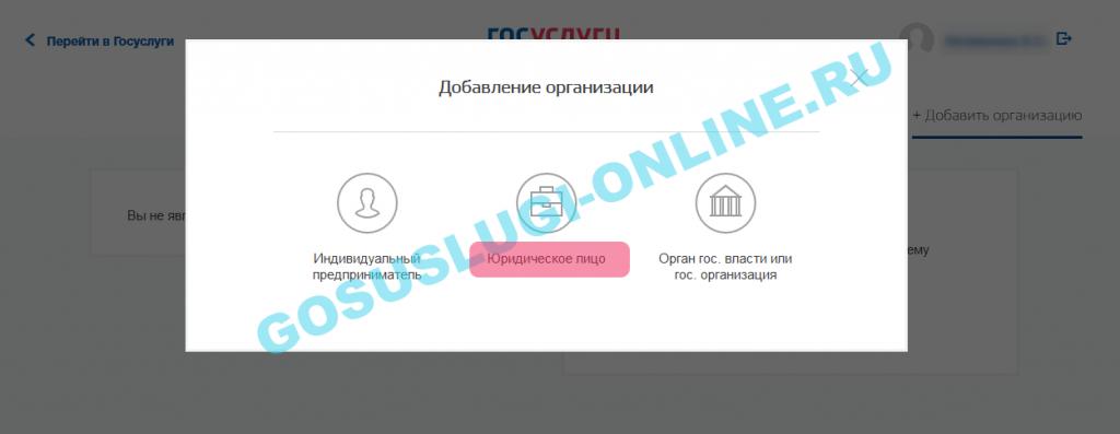 registraciya-yurlica-na-gosuslugah_7-1024x397.png
