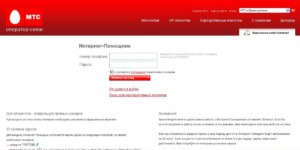 4-Stranitsa-vhoda-na-sajte-300x150.jpg