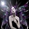 gotika_81_20120308_1124477837.jpg
