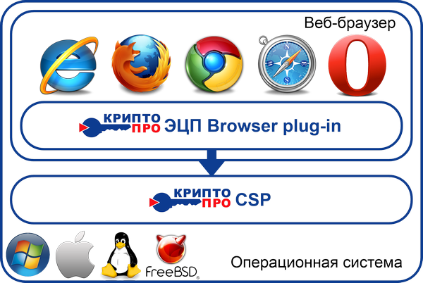 browser_plug-in_.png