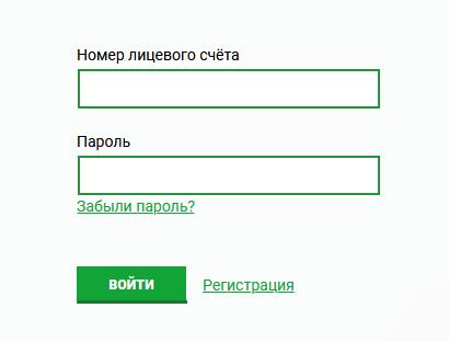 TNS-Energo-Velikij-Novgorod-vhod-v-lichnyj-kabinet.png